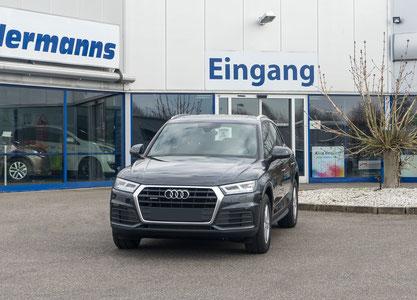 behindertengerechter Audi Q5 Selbstfahrerumbau, Handgerät, Lenkraddrehknauf, Pedalsperre, Sodermanns