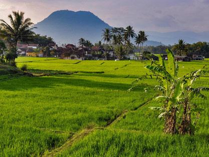 Vele vulkanen in de groene omgeving van Garut