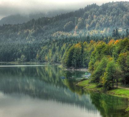 Der Stausee ist voll und die Herbstfärbung beginnt (aufgenommen am 28.09.2013).