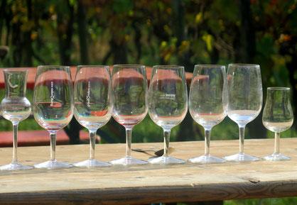 28. Oktober 2016 - Im Rebberg werden jetzt nicht nur Trauben geerntet, sondern auch getrunken