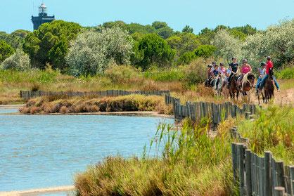 AbrivadoRanch: Balade à cheval 1 heure Terre de Camargue