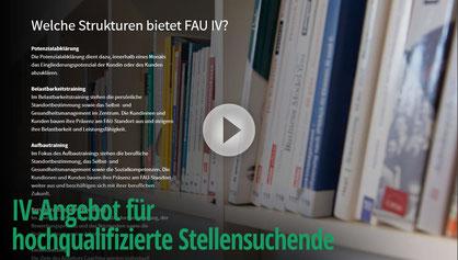 Pageflow FAU-IV