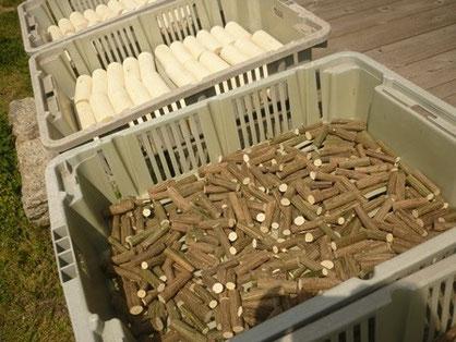 みかんの木のクラフトの材乾燥中 みかん笛