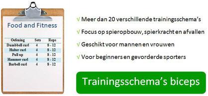 Trainingsschema trainingsschema's workout workoutschema afvallen spierkracht spiermassa ontwikkelen opbouwen