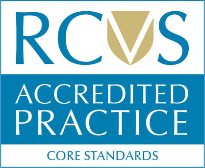 RCVS accredited practice Crieff
