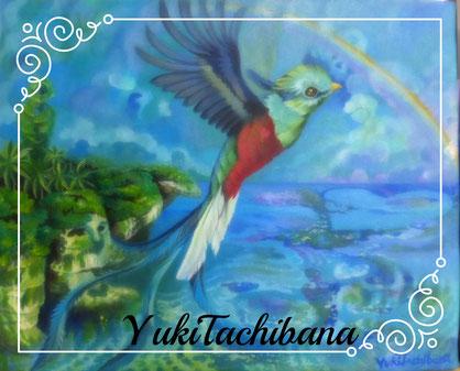 YukiTachibana  立花雪