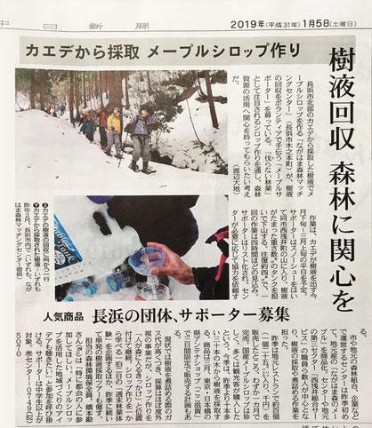 ●1/5中日新聞にメープルシロップの取り組みが掲載されました。