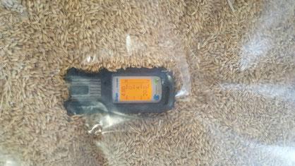 control de temperatura del grano, para tratamiento de plagas