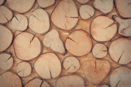 Scheiben aus unterschiedlichen Baumstämmen können eine ausgefallene Wandverkleidung bilden.