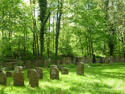 Jüdischer Friedhof in Wankheim, Bild: Sarah Huber.
