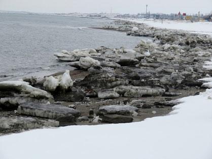 砂浜に打ち上げられた流氷。