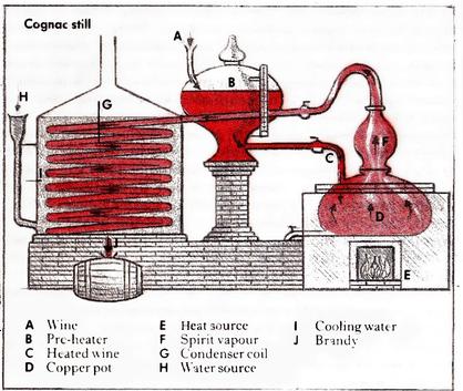 Copper Cognac Alambic