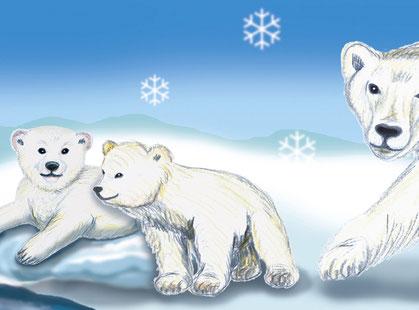 Bordüre: Polarwelt - passend zu Wandaufklebern: Polarwelt