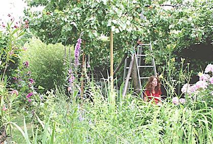 Gartengestaltung Gartenberatung Graz Ganzheitlich