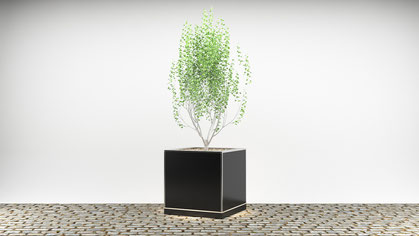 Cube mit Verkleidung aus hochwertiger Fassadenplatte (HPL) in schwarzer Optik sowie Edelstahl V4A Pflanzschale für Straßenfeste oder besondere Anlässe.