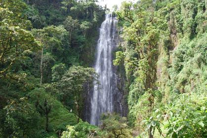 Der Materuni Wasserfall, einer der schönsten Wasserfälle am Kilimanjaro
