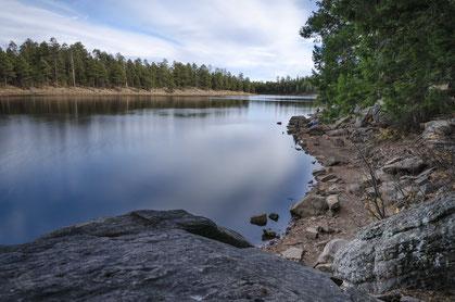 mogollon rim see lake reklektion wald