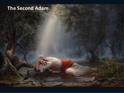 Le second Adam