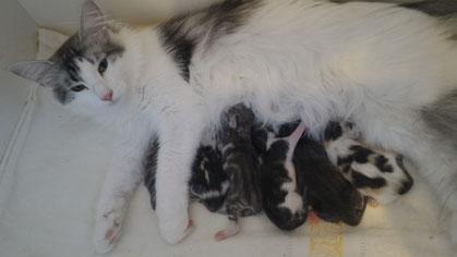 2 Tage alt mit Ihrer Mama