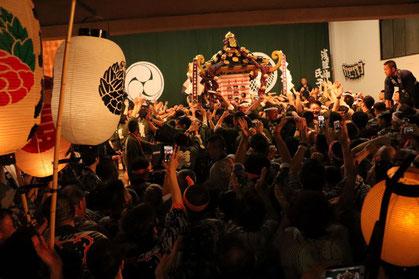 <三社祭> snj19_065 ©️YASUさん