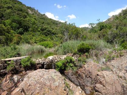 On suit le ruisseau du Perthus puis le Gabre du Gourin