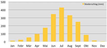 Klimadaten - durchschnittliche Niederschlagsmenge in Paro in Bhutan