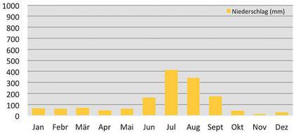 Klimadiagramm - durchschnittliche Niederschläge in McLeod Ganj in Indien
