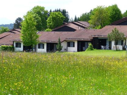 Blick auf Ferienhaus 118