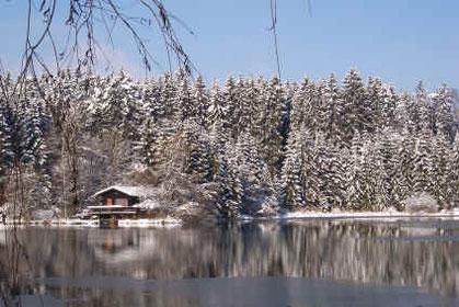 Buchsee im Winter