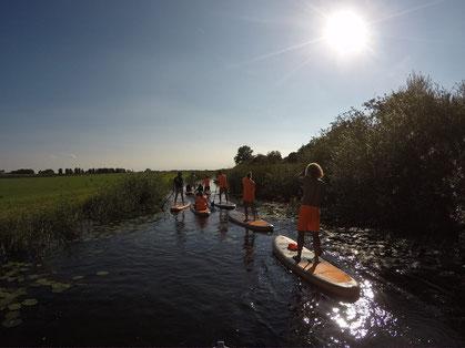 Kiten Lernen bei waveBandits in Holland, Stehrevier, IJsselmeer, Nordsee, Niederlande, Friesland