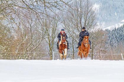 Winterreiten, Winterreiturlaub