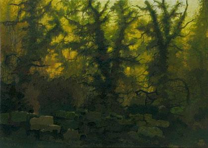 """MartinGuido  Becker """"Waldstück"""" 2011, Öl/Lwd, 50/70 cm"""