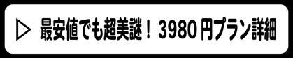 「最安値でも超美謎!3980円プラン」開かずの箱は大阪府大阪市で脱出ゲーム謎解きゲーム制作を行っております。