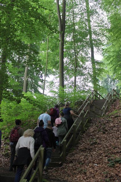 Spazieren gehen im Wald © Tourist-Information Bad Essen