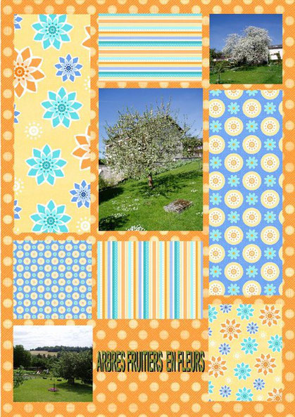 scrap, scrap digital, scrapbooking, photo