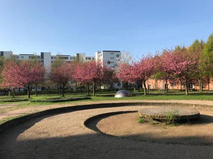 Der Cato-Bontjes-van-Beek-Platz in Bremen-Kattenturm. Veronika Maier gestaltete dieses Areal 1992 im Auftrag der Stadt Bremen. (Foto: 03-2018, Jens Schmidt)