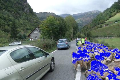La déferlante bleue à La Goutte d'eau - NDLR : ayant été interdit d'approcher par les forces de l'ordre, notre photographe a dû puiser dans ses archives...