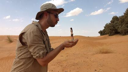 Sahara 2018