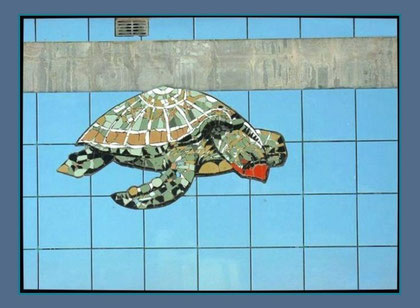 Diving turtle on pool Wall By Nimra Mhad