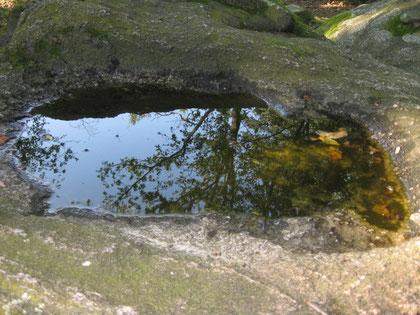 Wasserspiegelung auf dem Hünenstein  Foto:(c) AReiners