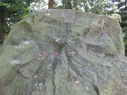 Foto: (c)AReiners Gesicht im Stein, Hünengrab Bruneforth