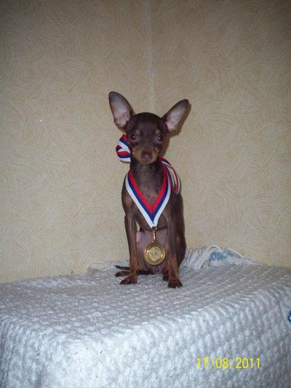 первая медаль