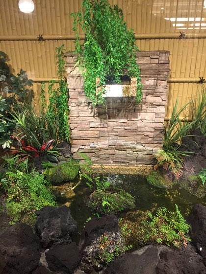 大阪の居酒屋で見つけた壁泉 あの効果のことを知っておくともっと良かった!