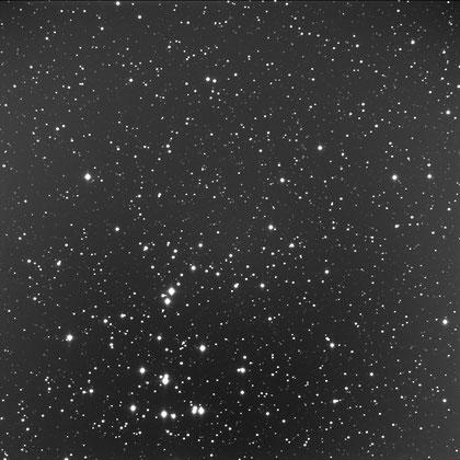 Ammasso stellare M44 nella costellazione del Cancro. Distanza  520 anni luce. Ripresa ccd effettuata all'Osservatorio  Astronomico di Cerreto d'Asti.