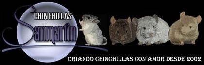 Chinchillas Sanmartín. De mi amiga Ingrid  ^^