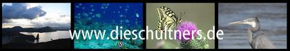 Faszinierende Einblicke in  Unterwasserwelten findet man bei Antje & Roland