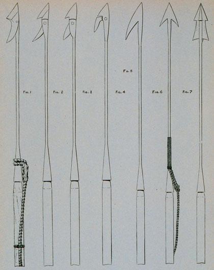 Type de harpons utilisés au XIXème siècle pour la chasse au mammifères marins