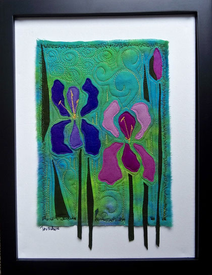 purple pink irises