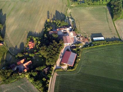 Zwinger Vizsla zu Barbrake in Asendorf