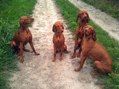 Anna, Birte, Aika und Lasse
